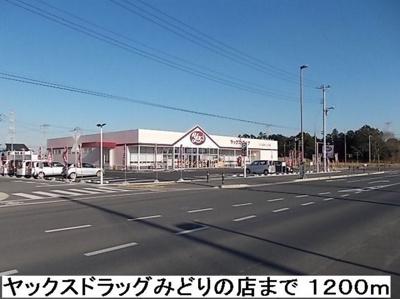 【周辺】タウロ ピスシス E