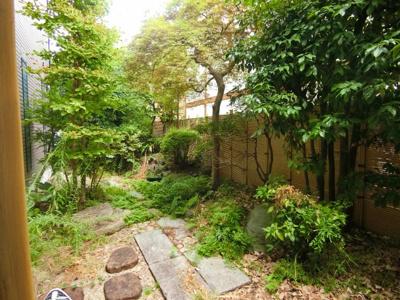 庭の緑が美しいです