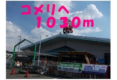 【周辺】ルピナスグロー