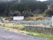 丹波篠山市犬飼 売土地の画像