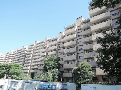 12階建の8階部分、南東向き、両面バルコニーにつき日当たり・通風良好!