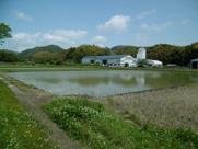 春野町西分の画像