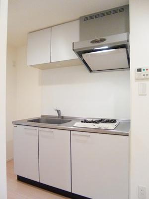 ニューシティアパートメンツ蔵前のキッチンです、広々シンクに豊富な収納棚