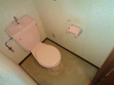 【トイレ】ハイグレイド公園南