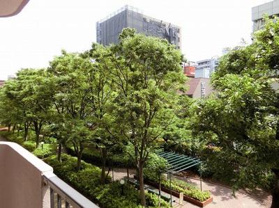 【現地写真】高層階からの眺望をお楽しみ下さい♪周りに高い建物はございません♪