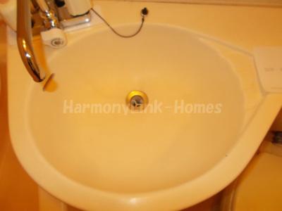 グランメール池袋の洗面所
