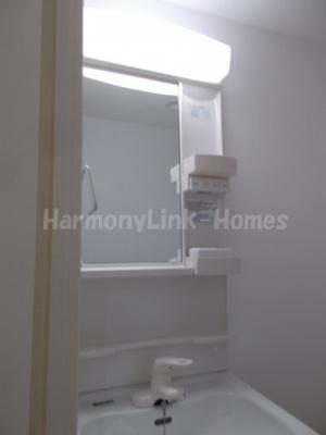 Blanc de Blancsの独立洗面台、小物を置くことができて便利です☆