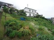 安芸郡坂町横浜東2丁目 家庭菜園用地の画像