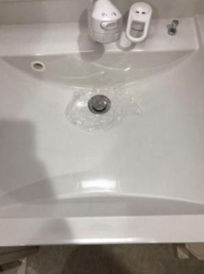 ハーモニーテラス南篠崎町の独立洗面台、朝の身支度には欠かせません(別部屋参考写真)★
