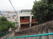 Hills岡本の画像