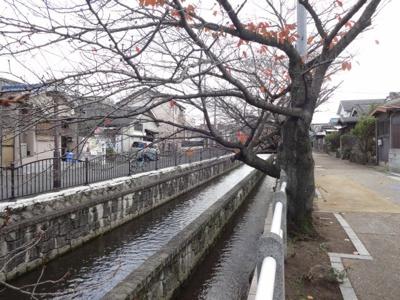 【周辺】リバーサイド 東久宝寺 八番館