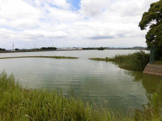 近隣の経ノ池 水鳥が飛来して豊かな自然を感じれる住環境です