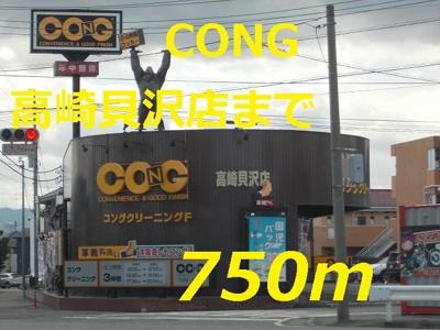 クリーニングCONGまで750m