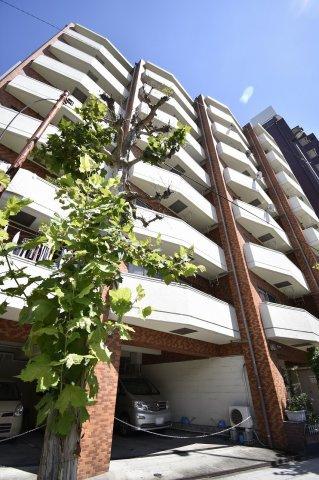 5階部分の西向角部屋!隣接地は遮る建物が無く眺望良好です♪