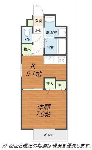 キッチン、洗面所(脱衣所)と居室が仕切られている1DK。