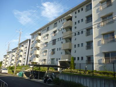 【外観】金沢シーサイドタウン並木2丁目7-6-502