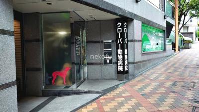 恵比寿大倉ビル:徒歩約2分のクローバー動物病院です。トリミングも受け付けてくれます。
