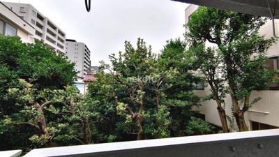 恵比寿大倉ビル:南東側の眺望です。緑があり癒されますね。