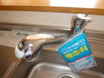 シングルレバー混合水栓(浄水器対応)