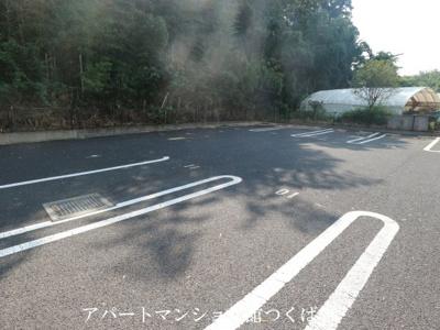 【駐車場】SEAS(シーズ)B