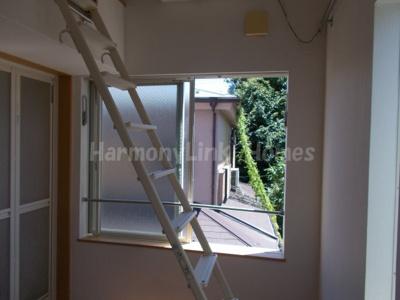 フェリスビオラの窓