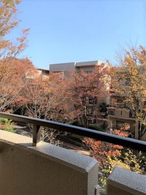 【展望】西神中央サウスコート5番館