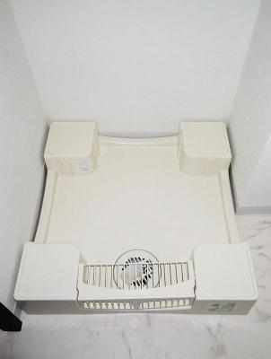 アルテカーサアリビエ東京イーストの室内洗濯機置き場