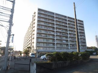 【外観】武蔵野スカイハイツ