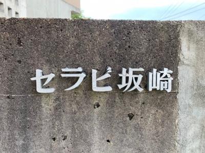 【エントランス】セラヴィ坂崎