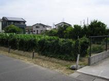 50537 羽島市江吉良町土地 の画像