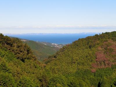 相模灘を遠望する、果樹園や畑が広がる里山の風景です。