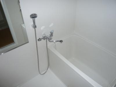【浴室】ドムスⅣ