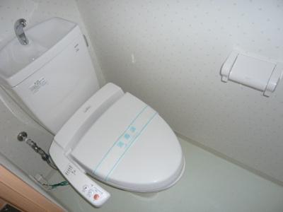 【トイレ】ドムスⅣ