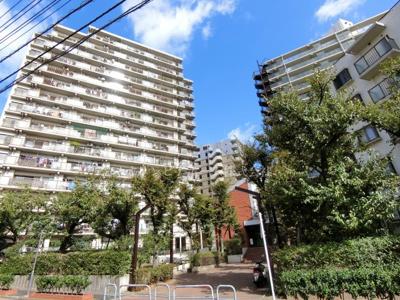 【外観】コープ野村大島 マンション リフォーム済 2階 空室