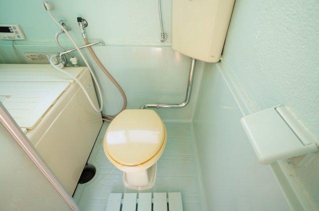 お風呂掃除のついでにトイレ掃除が出来て清潔に保てます♪