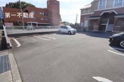 【駐車場】カモミール1