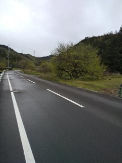 【前面道路含む現地写真】41895 山県市東深瀬土地