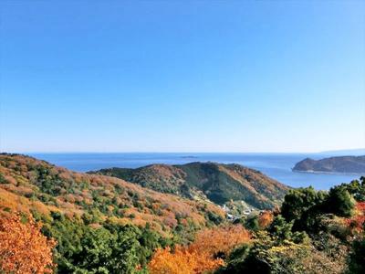 リビングから相模湾を一望!壮大な眺望に癒されます。