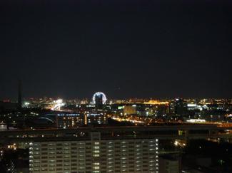 夜景 葛西臨海公園の観覧車が見えます