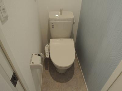 【トイレ】ハルジオン