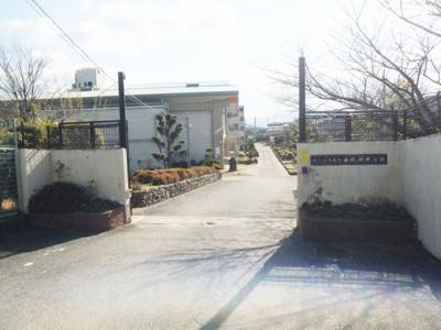 千代田中学校