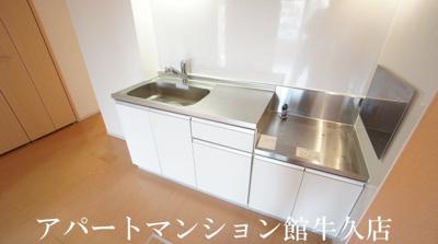 【キッチン】アプリコット
