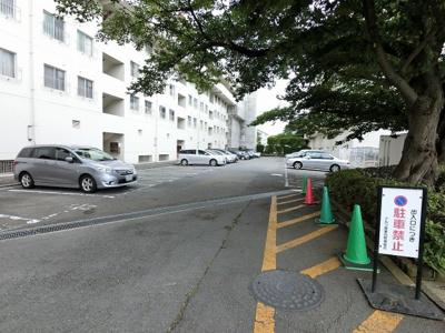 【駐車場】ドルフ青葉台3号棟
