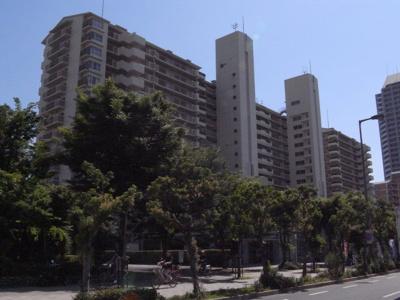 ◎マンション北側にはイオンモール鶴見が目の前です♪ ◎マンション敷地内に病院や学習塾や飲食店があり便利ですね♪ ◎マンション敷地内には小さいお子様を遊ばせる遊具のある公園がありますよ♪