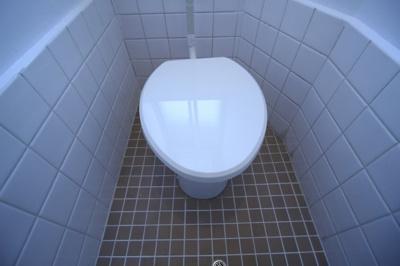 【トイレ】八尾マンション