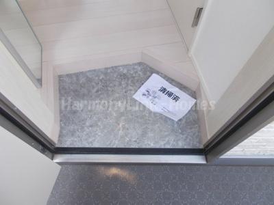 メゾンソフィア南蒲田のシンプルで使いやすい玄関です(別部屋参考写真)