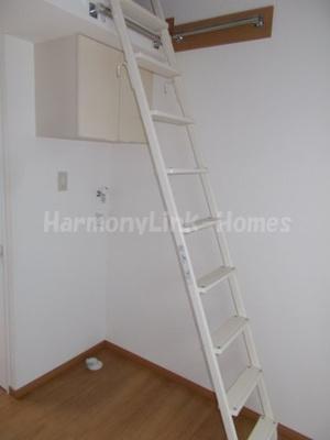 フェリスホーネットの梯子(別部屋参考写真)