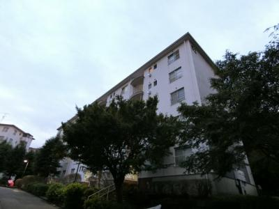 【外観】宮前平グリーンハイツ52号棟