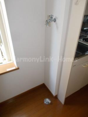 ライフピアルーチェの室内洗濯機置き場