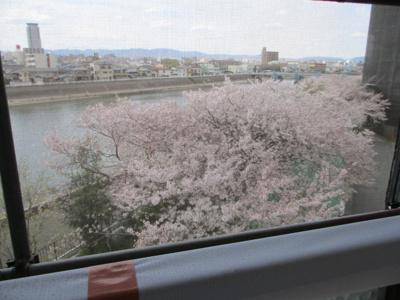 【展望】オリーブハイツ相川一号棟